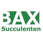 Bax Succulenten